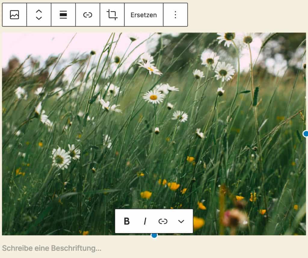 Screenshot des Bild-Blocks, nachdem ein Bild einer Blumenwiese hinzugefügt wurde.
