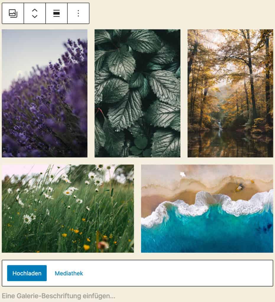 Screenshot des Galerie-Blocks, bei dem fünf Beispielbilder mit Naturmotiven hinzugefügt wurden.